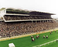 cheltenham_racecourse_stands